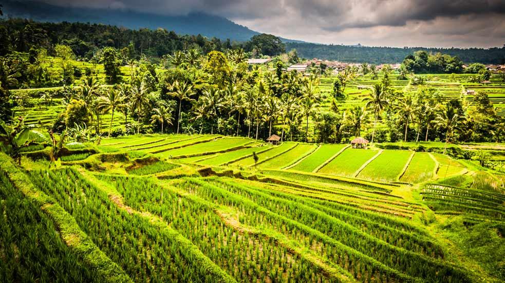 Jak Cestovat Na Bali