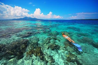 Výlet za žralokem velrybím a krásy podmořského světa Sulawesi